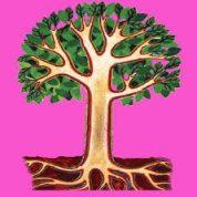 آیا میدانید انشعابات درخت چیست؟