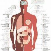 آیا میدانید چند نوع سرطان داریم؟