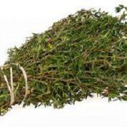 آیا میدانید گیاه آویشن کوهی چیست و چه خواصی دارد؟