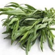 آیا میدانید گیاه ترخون چیست و چه خواصی دارد؟