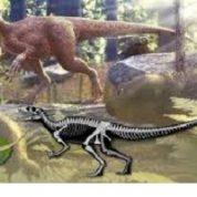 آیا میدانید دایناسور چه می خورند؟