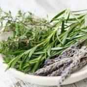 آیا میدانید گیاه رزماری چیست و چه خاصیتی دارد؟