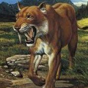 آیا میدانید ببرهای دندان شمشیری کی در زمین زندگی می کردند؟