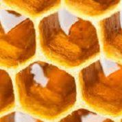 آیا میدانید عسل برای بیماری های ریوی خوب است؟
