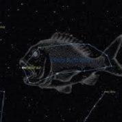 آیا میدانید حوت (ماهی) چگونه به آسمان آمد؟