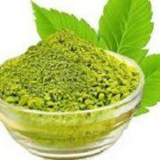 آیا میدانید گیاه سدر چیست و چه خاصیتی دارد؟