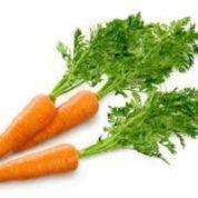 آیا میدانید گیاه هویج چیست و چه خاصیتی دارد؟