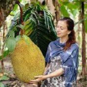 آیا میدانید کدام گیاه بزرگترین میوه را دارد؟