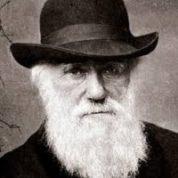 آیا میدانید نظریه چارلز داورین درباره حیوانات چه بود؟